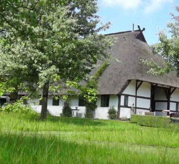 Video: Das Haus Quitte von Ira Schwarz in Kühlungsborn